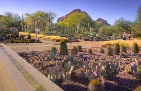 architecture fresh desert landscape architecture beautiful home