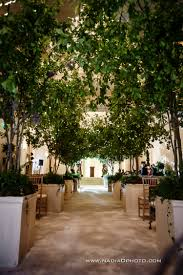 absolutely love this for back drop for wedding ceremony