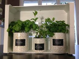 plante cuisine plantes aromatiques made in