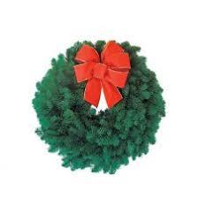christmas plants cheerful plants for christmas living plant gifts givingplants