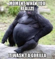 Gorilla Meme - moment when you realize it wasn t a gorilla pugrilla make a meme