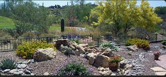 arizona landscaping design home ideas pictures homecolors