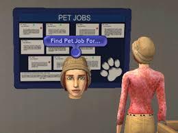 Seeking Gif Pet Seeking Gif Find On Giphy