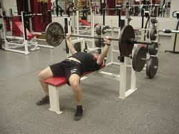 Proper Bench Form How To Increase Your Bench Press