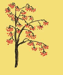 137 best the rowan tree images on rowan celtic tree