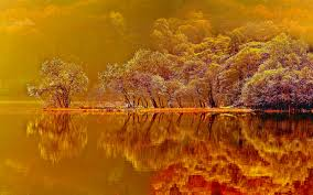 wallpaper hd orange wallpaper fall nice hd wallpapers with red and orange colors