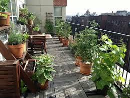 60 best balcony vegetable garden ideas 2016 roundpulse round
