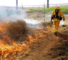 Ca Wildfire Training by Controlled Burn Trains Inmate Firefighters At California