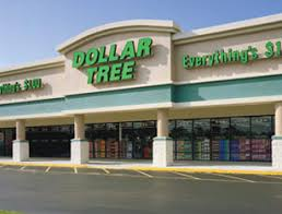 21 things i always get from the dollar tree and my finances