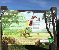 grassland native plants outstanding in the field views from north coast rangeland