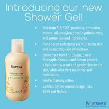 Cleaning Glass On Fireplace Doors by 74 Best Images About Norwex Chemical Free Cleaning On Pinterest
