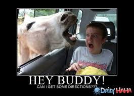 Hey Buddy Meme - armpit buddy