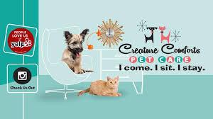 Creature Comforts Pet Sitting Creature Comforts Pet Care Rocklin Home Facebook