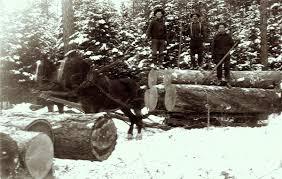 a drifting cowboy cowboy legacy montana stump ranch 1912