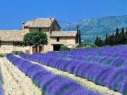 Traumhaus Kaufen Immobilien Frankreich Kaufen Haus Kaufen Frankreich