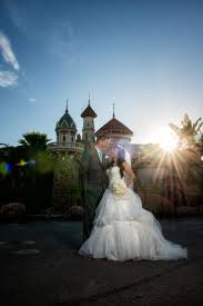 plant sale u2013 alta peak 31 best the kiss images on pinterest the kiss bride groom and