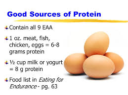 overview protein protein requirements intake for athletes