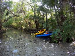 Crystal River Florida Map Travel Guide 5 Awesome Things To Do In Crystal River Florida