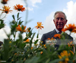 prince charles of wales visits todmorden photos and images getty