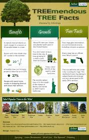 info graphic that shows a variety of facts about trees that range