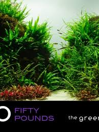 Aquascape Store Gift Vouchers