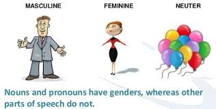 lesson plan of masculine feminine and neuter gender english grade