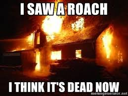 I Saw A Spider Meme - i saw a roach i think it s dead now spider house fire meme