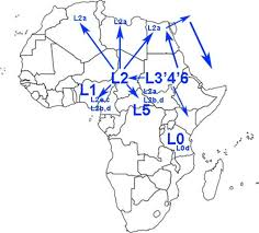 map 4 africa 100 ka mis 5c b 106 85 ka stage 4 africa mtdna map l0 branches