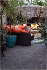 backyards ergonomic bamboo tropical backyardbackyard ideas 134