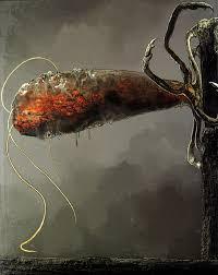 parasitic wall hugger souls wiki