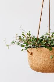 Hanging Planters Indoor by Cork Hanging Planter Cork Planters And Indoor