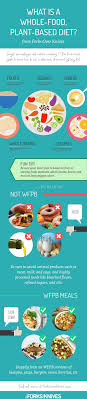 what is a whole food plant based diet infographic
