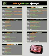 Beast Meal Plan Spreadsheet This P90x3 Bodybeast Hybrid Is All About Maximizing Both