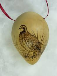 109 best sometimes quails images on