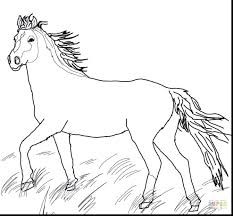 coloring pages horse trailer breyer coloring pages medium size of coloring coloring pages paint