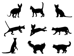 cat tattoo designs google search kitties pinterest cat