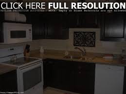 100 painting kitchen cabinets without sanding how to paint