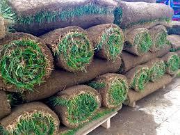 Sod Estimate by Lawn Sod Rocky Ridge Landscaping