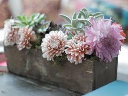 succulent arrangements succulent flower arrangement