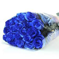 blue roses 3 reasons why should we send blue roses to our beloved ones