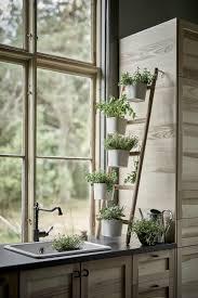 plante pour cuisine 7 idées de supports pour vos plantes d intérieur bricobistro