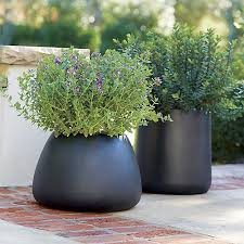 Tall Plastic Planters by 161 Best Front Yard And Garage Planters Images On Pinterest