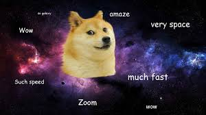 Doge Meme Template - 31 best stupidest and most famous internet memes around pocket lint
