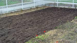 preparing the gardens for planting the martha stewart blog
