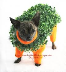 Halloween Costumes Dachshunds 20 Halloween Costumes Dogs Etsy