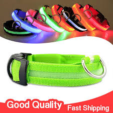 collar led glowing light s m l safety collars