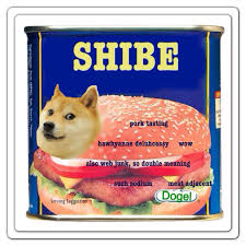Spam Meme - spam doge doge know your meme