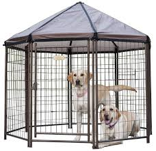 the best outdoor dog kennels in 2017 dogs recommend