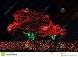 outdoor tree lights stock images image 3874424