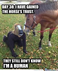 Horse Mask Meme - funny horse mask meme information keywords and pictures